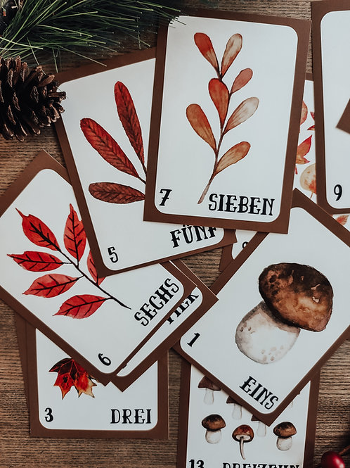 German Number Flashcards 1- 20