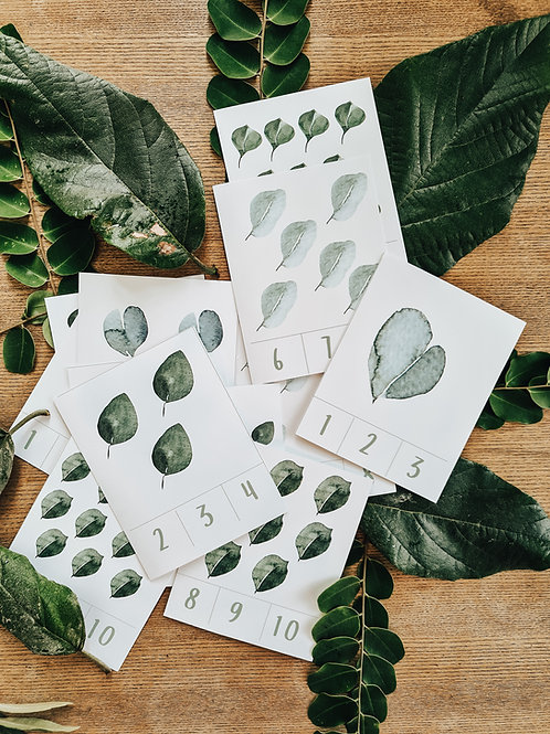Eucalyptus Counting and Shape Cards
