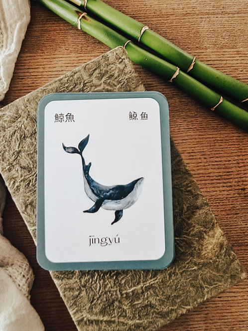 Mandarin Animal Flashcard Set