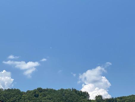 夏の屋外ヨガイベント~Blue Sky Yoga in 木島平村  ケヤキの森公園