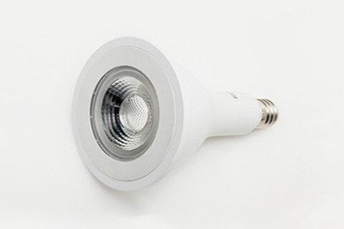 'Standard' Par30 LED