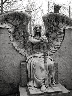 Hasserot Angel 10