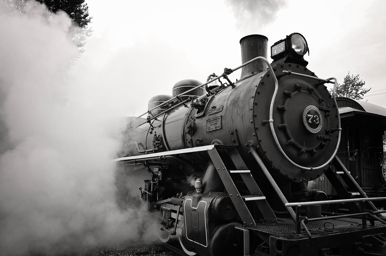 Alaskan Train