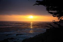 Sunset Monterey 2