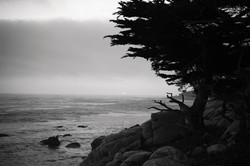 Sunset Monterey