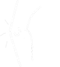 Sportletsels, blessure, kinesist Rotem, Dilsen