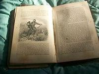 1863 book picture - website.jpg