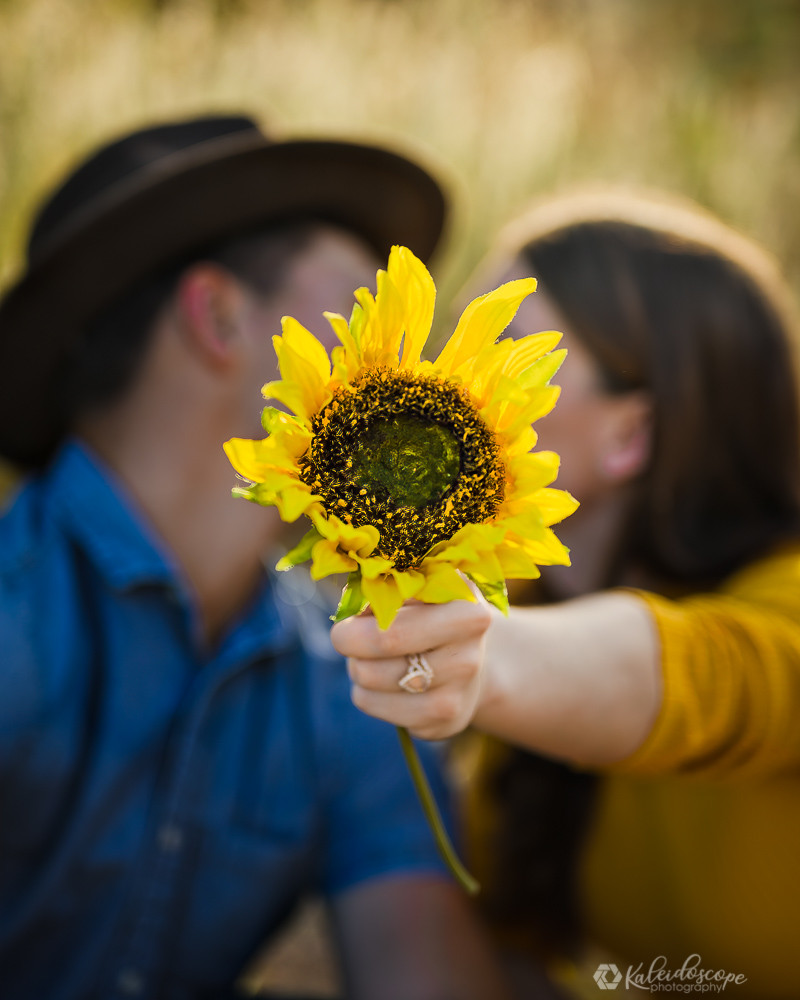An engagement photo of a couple holding a sunflower to the camera as they lean in for a kiss behind the sunflower