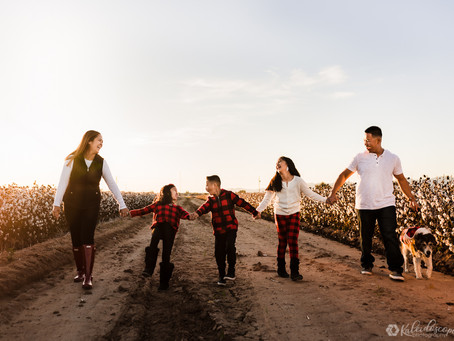 Finding The Perfect Photographer For Your Family