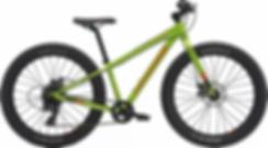 bicicletta pontedilegno.webp