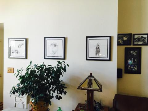 New Home of 3 Commissioned Drawings
