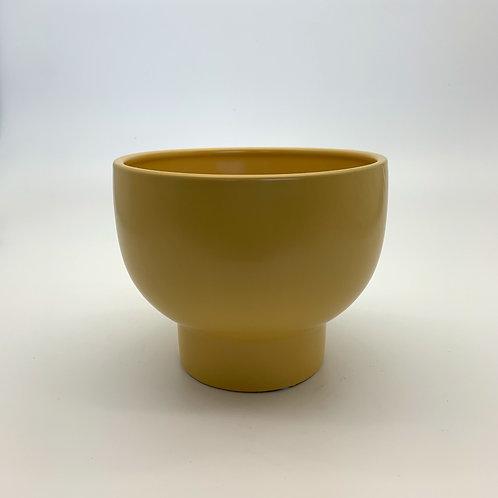 Mustard Miso Pot
