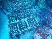 神津島 海底貯蔵