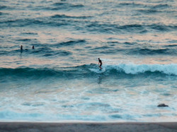 神津島 サーフィン