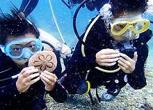 神津島 体験ダイビング 赤崎