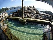 神津島 温泉