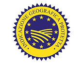 igp logo transp.png