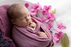 photographe naissance namur