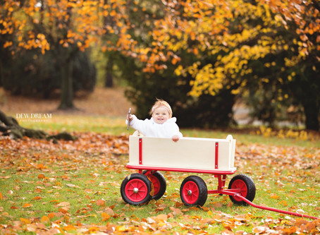Magic of autumn!