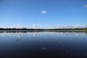 Rio Amazonas.jpeg