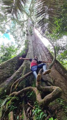 Selva Amazonas 5.jpeg
