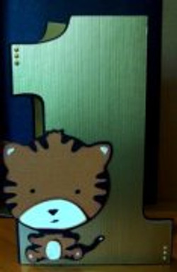pi_will_cat