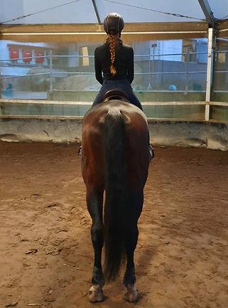 geistige aufrichtung pferde