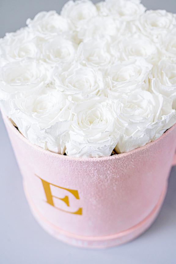 8-VEN-Knots&BloomsProductShoot-EX-MR-NWM