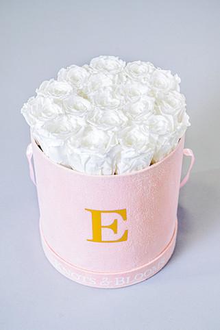 6-VEN-Knots&BloomsProductShoot-EX-MR-NWM