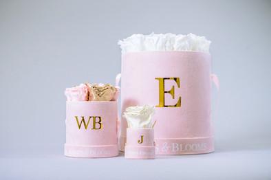 61-VEN-Knots&BloomsProductShoot-EX-MR-NW
