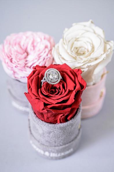 57-VEN-Knots&BloomsProductShoot-EX-MR-NW