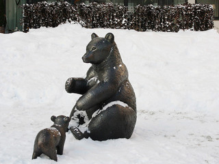 Bear and her bear cub