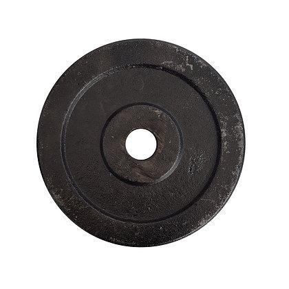 Disco de Fundición de 10kg para Pesas