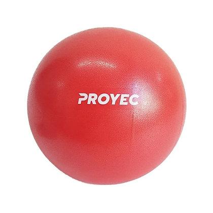Pelota Esferodinamia Pilates Yoga de 25cm Proyec Gym Ball