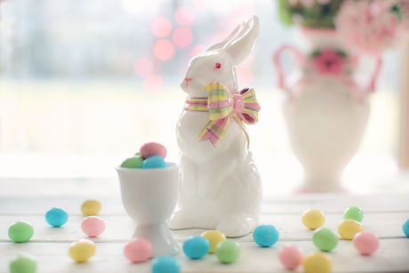 bunny-candy-celebration-373331.jpg
