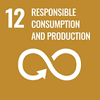 CPH`ATTITUDE is sustainable jewelry and supports SDG 12 Responsible consumption and production