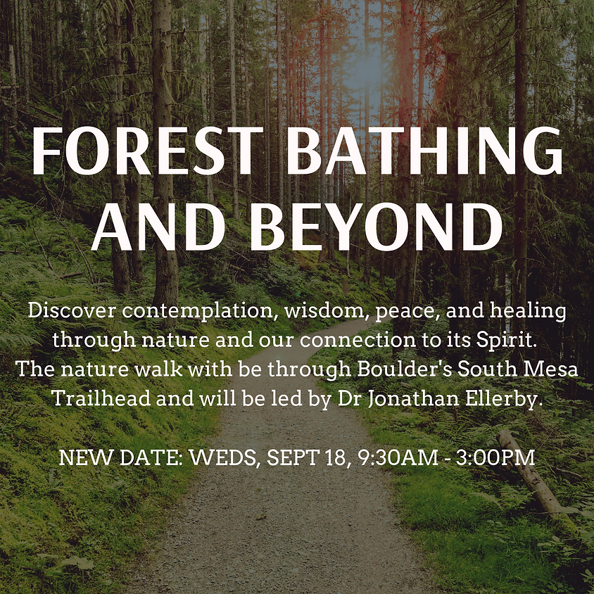 Forest Bathing and Beyond - NEW DATE!