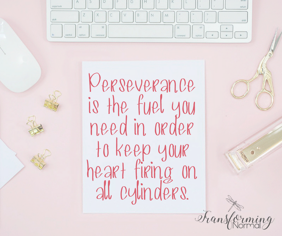 Perseverance - The Adventures Ahead guest post