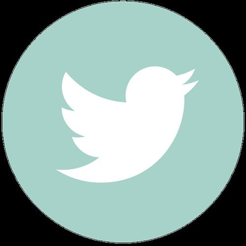 Twitter Icon - TN 1