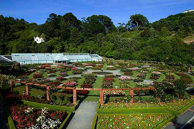 botanic.jpg