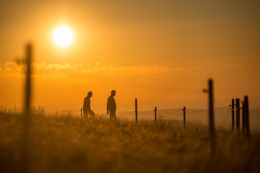 sunset vosges-5017.jpg
