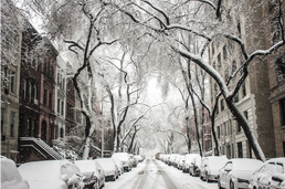 new york neige.png