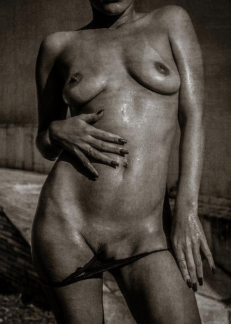 The lady of pleasure | Fine Art Nude Print | Nude Wall
