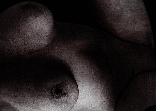 Shadows of the desired woman | Fine Art Nude Print | Nude Wall Art