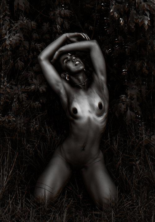A garota da selva | Fine Art Nude Print | Nude Wall