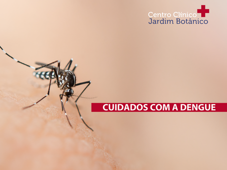 Cuidados com a Dengue