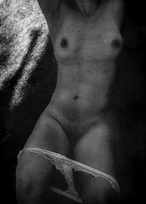 O jardim do prazer | Fine Art Nude Print | Nude Wall