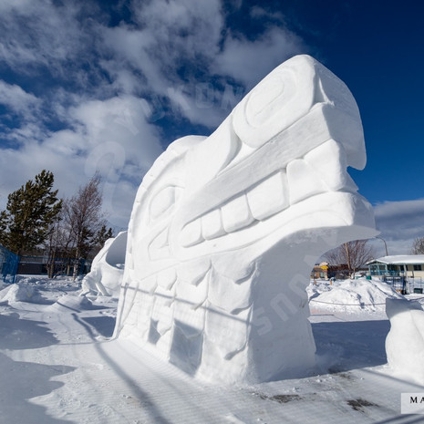 YR2021 SnowCarvingsIMG_1200-sm.jpg