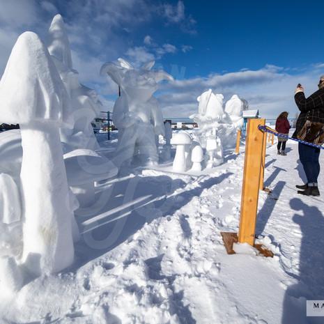 YR2021 SnowCarvingsIMG_1229-sm.jpg