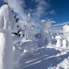 YR2021 SnowCarvingsIMG_1219-sm.jpg